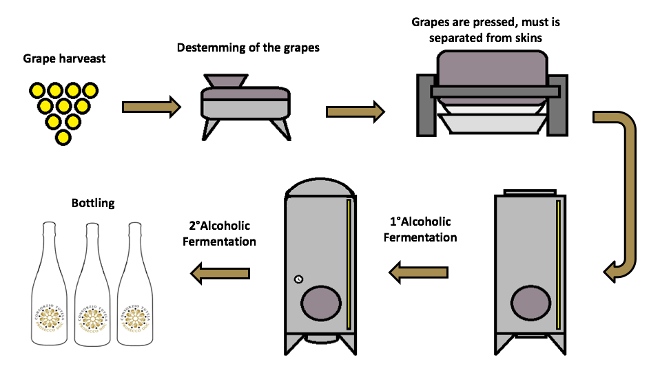 vinemaking-process